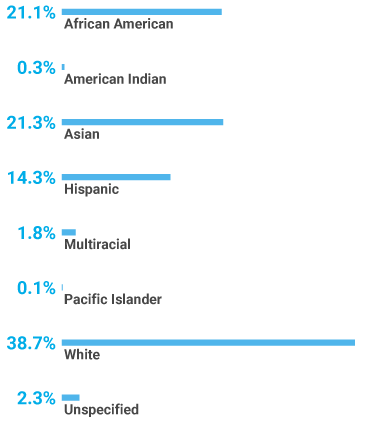Chart showing UT Southwestern ethnicity in 2019 as 21.1 percent African American, 0.3 percent American Indian, 21.3 percent Asian, 14.3 percent Hispanic, 1.8 percent Multiracial, 0.1 percent Pacific Islander, 38.7 percent White, and 2.3 percent Unspecified