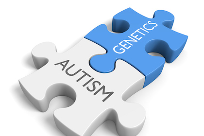 Scientists identify new gene involved in autism spectrum disorder
