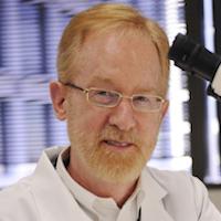 Researchers Identify New Autism Blood >> Newsroom Archive 2016 Ut Southwestern Dallas Tx