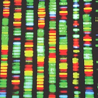 DNA sequencing technology unlocks the genetics of lupus