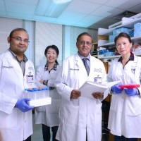 Researchers identify process that causes chronic neonatal lung disease