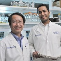 Study identifies potential therapeutic target for incurable, rare type of soft-tissue cancer