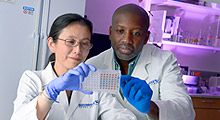 Researchers looking at a sample