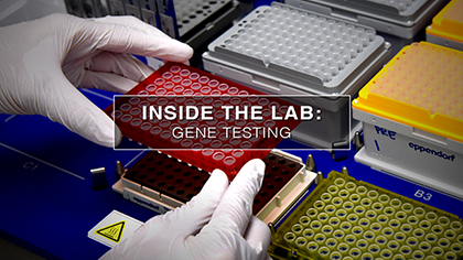 Inside the lab with many samples