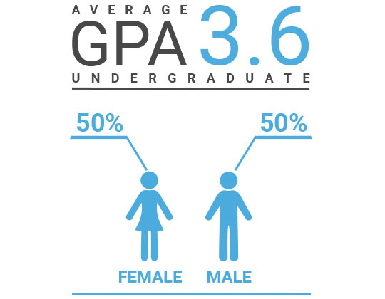 Demographics image showing average undergraduate GPA is 3.6, and 50% of students and female and 50% are male.