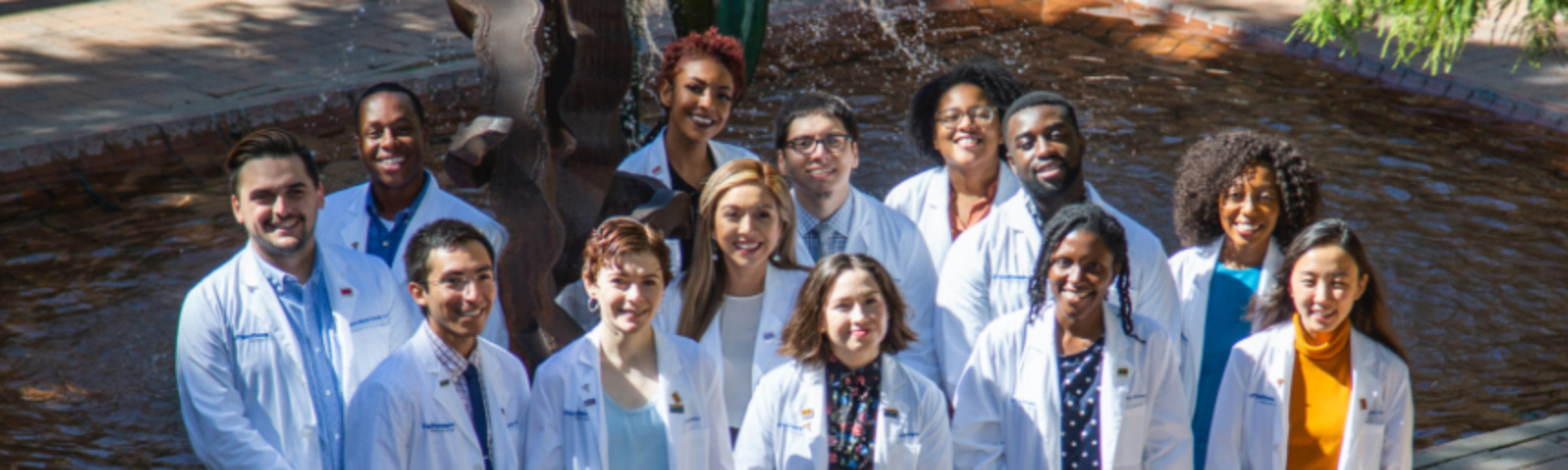 A group of diverse medical students standing in front of a tree