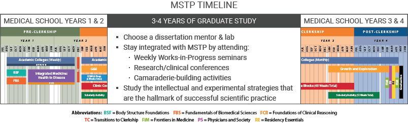 Timeline of MSTP showing first two years of medical school, three years of graduate school, and years3 and 4 of medical school