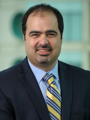 Hamid Mirzaei, Ph.D.