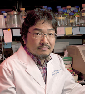 Dr. Masashi Yanagisawa, principal author of the study published online in May in the Proceedings of the National Academy of Sciences