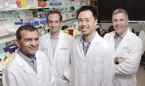 Drs. Dinesh Rakheja, Joshua Mendell, Kenneth Chen, and James Amatruda