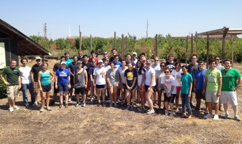 Volunteer Service Project (Texas Trees)