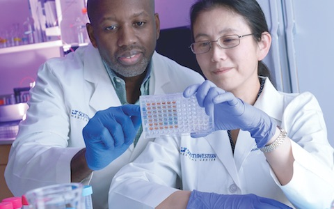 Dr. Ian Corbin (left) and Dr. Xiaodong Wen look over lab samples from their study of an experimental nanoparticle therapy that shows promise for fighting primary liver cancer.
