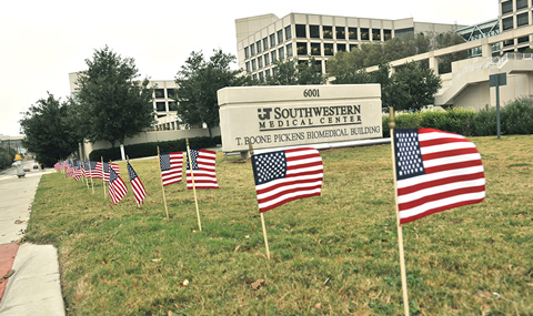 Flags on campus remembering the 50th anniversary assassination of President John F. Kennedy