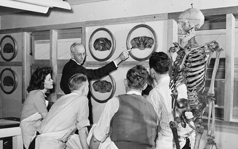 In a photo from the digital collection, Dr. William W. Looney in 1944 quizzes students of the former Southwestern Medical College on anatomy.