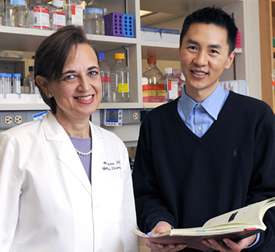 Dr. Beth Levine and Dr. Richard Wang