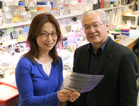 Dr. Seung-Hee Yoo (left) and Dr. Joseph Takahashi found that certain genes related to circadian rhythms can regulate the length of that rhythm.