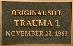 Trauma Plaque