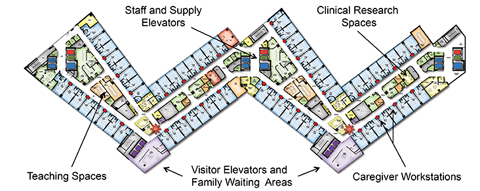 Illustration of the W-shaped design of Clements University Hospital