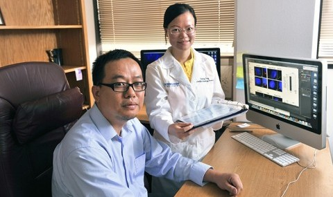 Dr. Qing Zhong (left) and Zaiming Tang