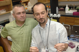 Drs. Roberto Coppari (right) and Joel Elmquist have discovered in mice that defects in the brain's ability to respond to glucose could play a role in the development of non-insulin dependent (type 2) diabetes.