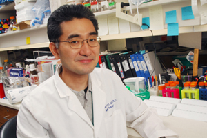Dr. Makoto Kuro-o, associate professor of pathology, has reported that a relative of the anti-aging gene Klotho helps activate a hormone that can lower blood glucose levels in fat cells of mice. This discovery of a particular type of Klotho protein could eventually make it a novel target for developing drugs to treat human obesity and diabetes.
