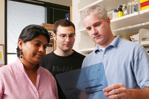 Dr. Christopher Cowan (right), assistant professor of psychiatry, found that increased brain connections during chronic drug use may actually limit behavioral changes associated with addiction, rather than support them. The team, including lead authors Dr. Suprabha Pulipparacharuvil and William Renthal, hopes this finding could lead to a pathway for pharmaceutical treatment of addiction.