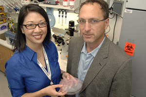 Drs. Jenny Hsieh and Jay Schneider are among the researchers who created a small molecule that stimulates nerve stem cells to begin maturing into nerve cells in culture. This development that might someday allow a person's own nerve stem cells to be grown outside the body, stimulated into maturity, and then re-implanted as working nerve cells to treat various diseases.