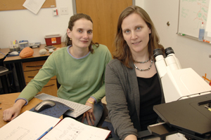 Dr. Amelia Eisch (right) and colleagues from psychiatry, including Dr. Diane Lagace, uncovered a beneficial mechanism of the Cdk5 protein, which is also thought to kill brain cells and contribute to diseases such as Alzheimer's. The researchers found that Cdk5, together with its activating partner molecule p35, helps immature nerve cells become fully functional.