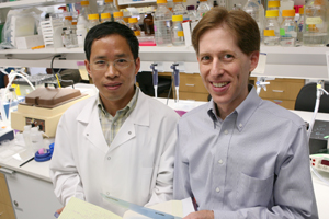 Dr. Matthew Goldberg, assistant professor of neurology and psychiatry and senior author of the paper (right), and Xiaodong Ding, senior research associate