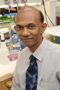 Dr. Chandra Mohan, professor of internal medicine and senior author of the study