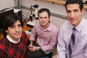 Research by (from left) Drs. Mario Perello, Michael Lutter, Jeffrey Zigman and their colleagues suggests that there are situations in which our brains drive us to seek out and eat very rewarding foods, even if we're full.
