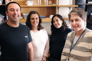 Dr. Carol Elias (right) and postdoctoral researchers (from left) Jose Donato Jr., Renata Frazao and Roberta Cravo found that leptin in the PMV area of the brain may trigger puberty in females.