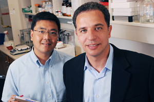 Researchers, including Drs. Hesham Sadek (right) and Chengcheng Zhang, found the unique properties that allow a type of stem cell to survive a lack of oxygen.
