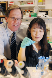In a rodent study, Drs. Philip Shaul and Chieko Mineo uncovered mechanisms that lead to a disorder predisposing those affected to blood clots.