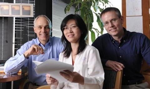 Starve hormone Drs. Zhang, Mangelsdorf, Kliewer