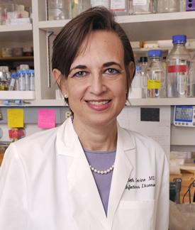 Dr. Beth Levine