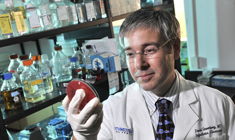 Dr. David Greenberg, assistant professor of internal medicine and microbiology, checks a sample for growth of Acinetobacter bacteria as part of a study that tested a new type of antibiotic called a PPMO.