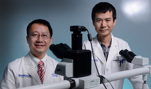 Dr. Lu Le, left, and postdoctoral researcher Dr. Zhiguo Chen