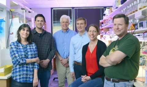 Members of the UT Southwestern research team that identified a new protein that plays a role in heart muscle contraction included (l-r) Dr. Rhonda Bassel-Duby, Dr. Douglas Anderson, Dr. Eric Olson, Benjamin Nelson, Dr. Catherine Makarewich, and John McAnally.