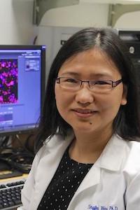Dr. Yingei Wang in lab