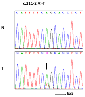 TSC1 is mutated in ccRCC.