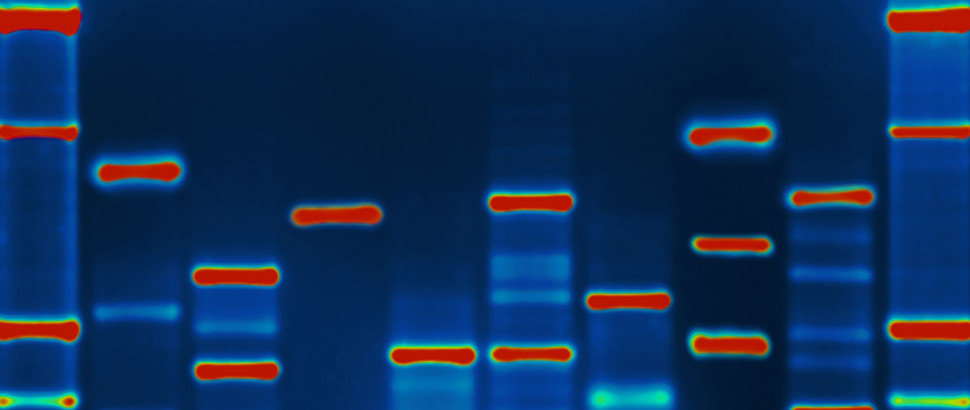 Next Generation Sequencing Core banner 2