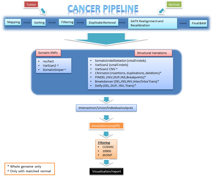 Analysis workflow for cancer data