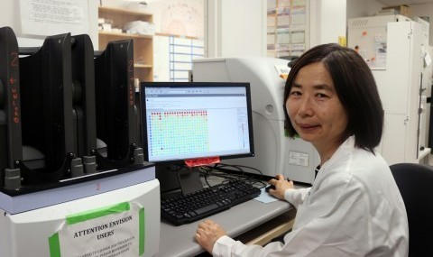 Screening scientist Shuguang Wei, Ph.D., reviews results on the Envision multi-mode reader.