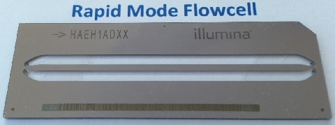 Rapid Mode Flow Cell