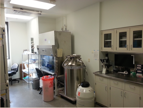Cell Culture and Molecular Biology Laboratory