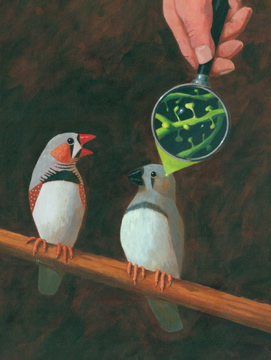 Painting of finches