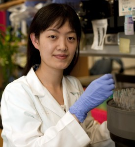 Ying Liu in laboratory