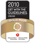 Gold Plus Performance Achievement award graphic