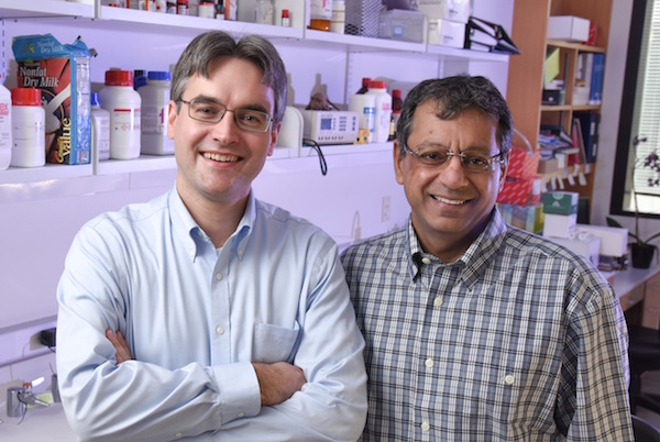 Dr. Ralf Kittler and Dr. Robert Bachoo in lab